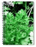 Parsley Spiral Notebook