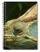 Parsons Chameleon From Madagascar 12 Spiral Notebook