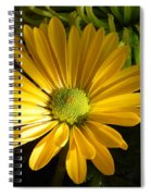 Partly Sunny Spiral Notebook