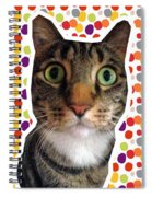 Party Animal- Cat With Confetti Spiral Notebook