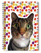 Party Animal - Smaller Cat With Confetti Spiral Notebook