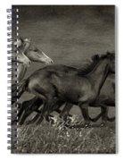 Paso Peruvian Horses On The Run Spiral Notebook
