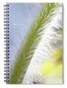 Pasqueflower Stem  Spiral Notebook