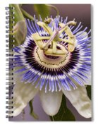 Passiflora Caerulea Spiral Notebook
