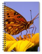 Passion Butterfly On The Mexican Sunflower Spiral Notebook