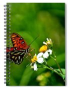 Passion Butterfly Painted Spiral Notebook