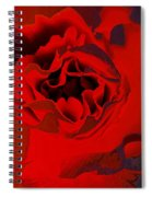 Luxury Spiral Notebook