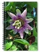 Passion Flower 4 Spiral Notebook