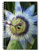 Passion Flower Spiral Notebook