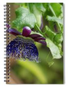 Passion Flower - Ruby Glow Spiral Notebook