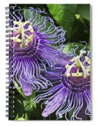Passion Flowers Spiral Notebook