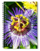 Passion Fruit Flower Spiral Notebook