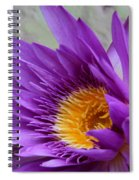 Passionate Purple Water Lily Spiral Notebook