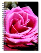 Passionate Rose Spiral Notebook