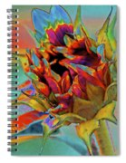 Past Summers Spiral Notebook