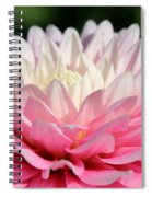 Pastel Awakening Spiral Notebook