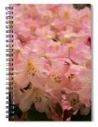 Pastel Coral Azaleas Refreshed By The Rains Spiral Notebook