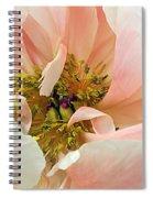 Pastel Floral Spiral Notebook