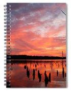Pastel Morn Spiral Notebook
