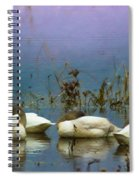 Pastel Morning  Spiral Notebook