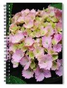 Pastel Pink Hydrangea Spiral Notebook