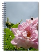 Pastel Pink Roses With Bee Spiral Notebook