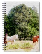 Pasture For Three Spiral Notebook