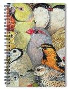 Patchwork Birds Spiral Notebook