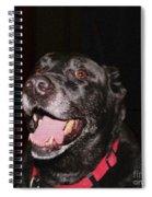 Patchwork Black Lab Smiling Spiral Notebook