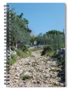 Path Among Olive Trees Spiral Notebook