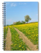 Path In Dandelion Meadow  Spiral Notebook