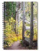 Path Of Peace Spiral Notebook