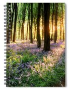 Sunrise Path Through Bluebell Woods Spiral Notebook