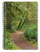 Path Through The Rainforest Spiral Notebook