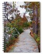 Path Through The Wetlands 10 Spiral Notebook