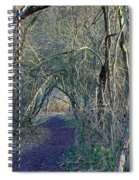 Path Through The Woods Spiral Notebook