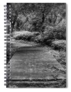 Path To The Forest Spiral Notebook