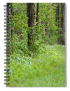 Path To The Green Forest Spiral Notebook