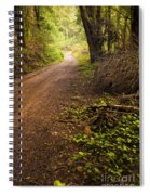 Pathway In The Woods Spiral Notebook