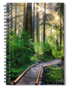 Pathway Into The Light Spiral Notebook
