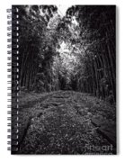 Pathway Through A Bamboo Forest Maui Hawaii Spiral Notebook