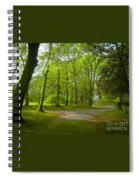 Pathway Through The Trees Spiral Notebook