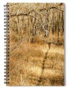 Pathways Spiral Notebook
