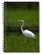 Patience - Egret Spiral Notebook