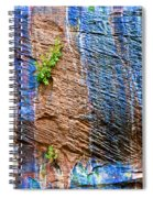 Pattern On Wet Canyon Wall From River Walk In Zion Canyon In Zion National Park-utah  Spiral Notebook