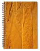 Patterns And Animal Tracks On Sand Spiral Notebook
