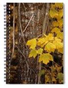 Patterns Of Fall Spiral Notebook