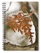 Patti Page Spiral Notebook