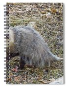 Pawing Possum Spiral Notebook