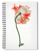 Field Poppy Spiral Notebook
